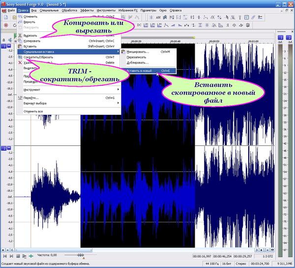 SoundForge9 - запись-10(trim или копировать-вставить в новый)