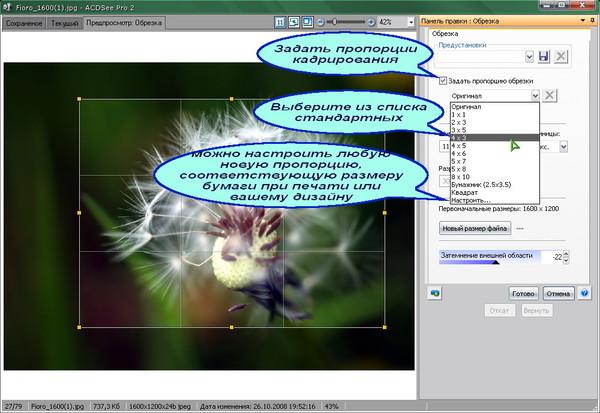 ACDSee-crop - 03 - задать пропорцию кадрирования