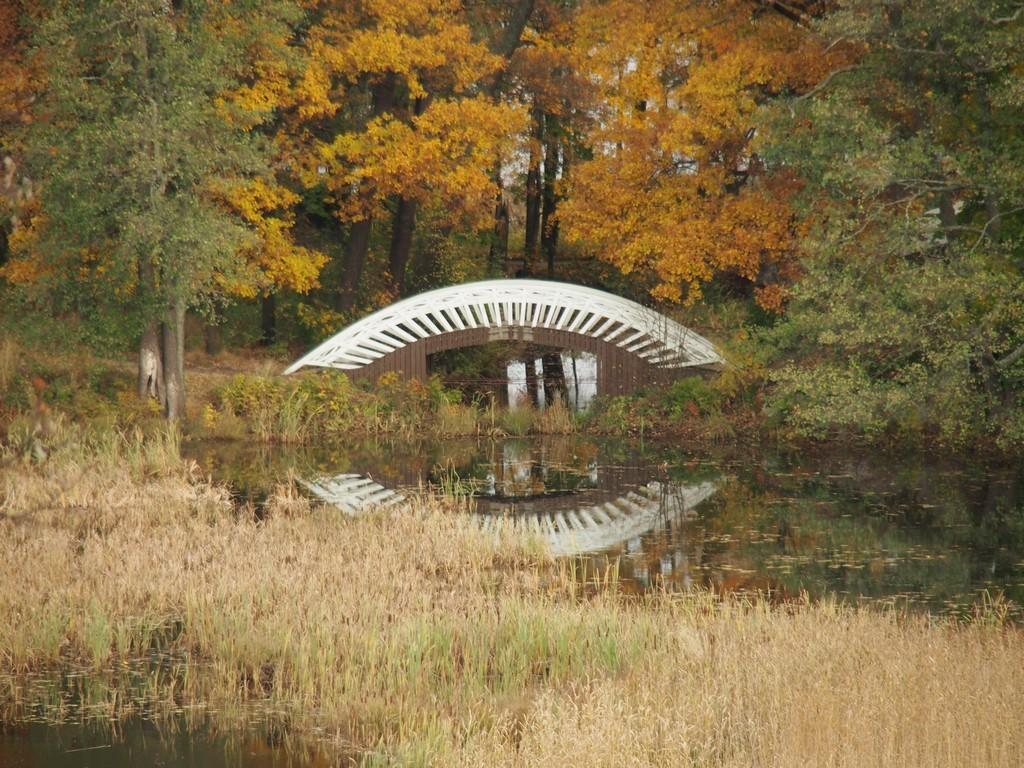 Парк Монрепо-моё отдохновение