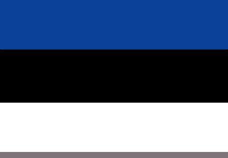 черно синий флаг