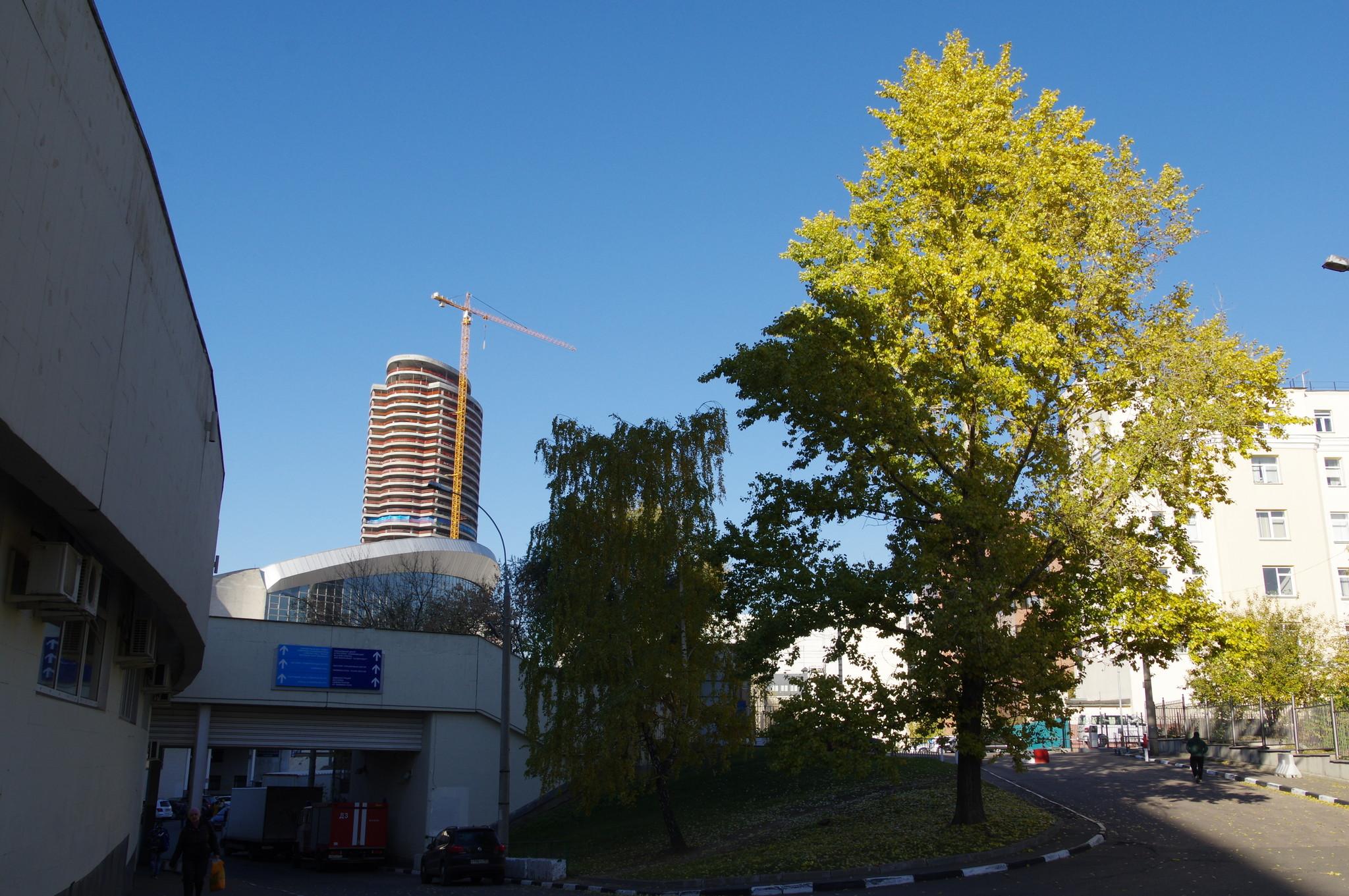 СК «Олимпийский» (Олимпийский проспект, дом 16)