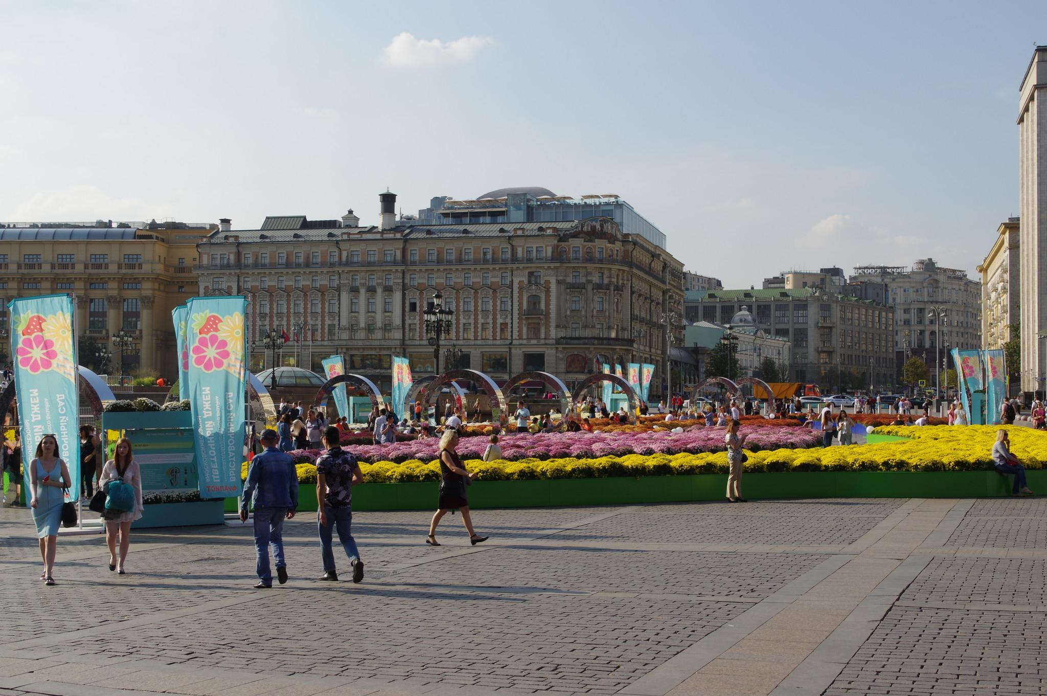 80 лет ВДНХ. Специальный проект фестиваля «Цветочный джем» на Манежной площади