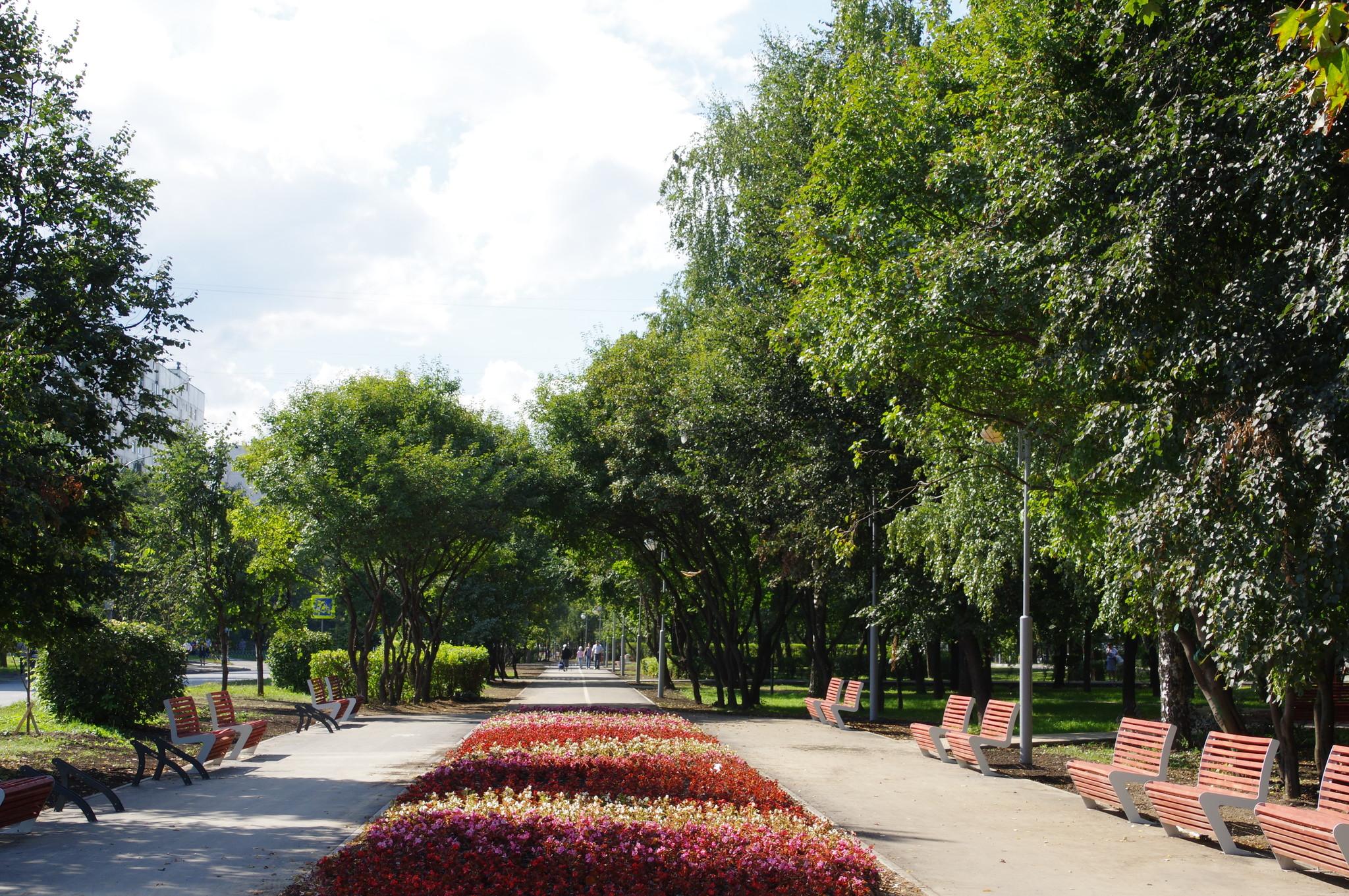 «Народной парк» на улице Череповецкая (участок 1)