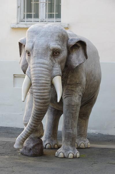 Скульптура слона. Государственный музей Востока (Никитский бульвар, дом 12А)