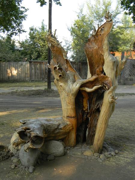 Роща перед Всероссийским мемориальным музеем-заповедником В.М. Шукшина