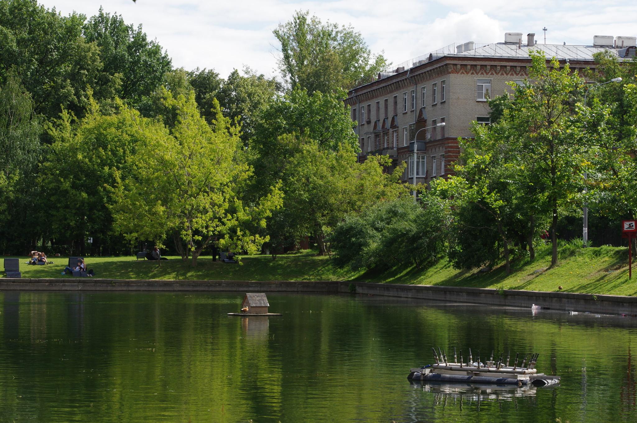 Пруд в Гончаровском парке