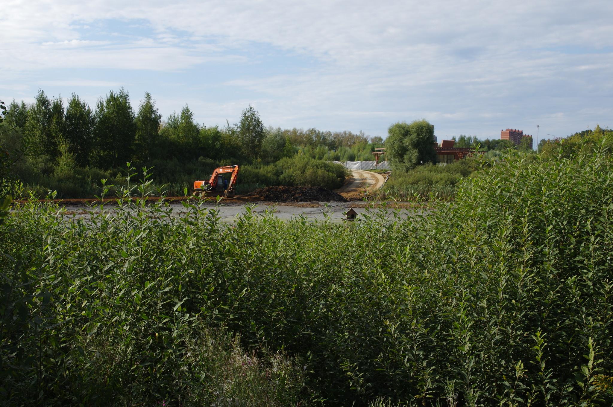 Реконструкция Пахомовского пруда в Заболотье