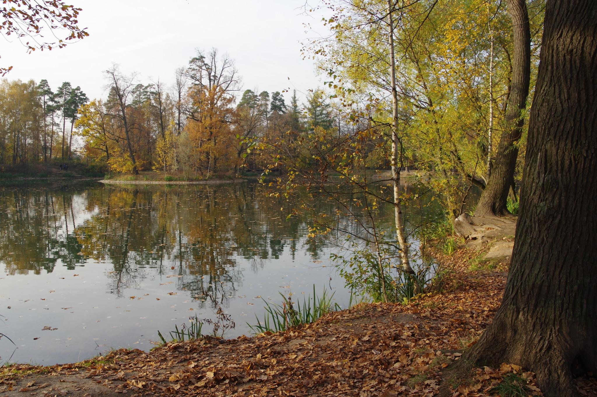 Пруд около усадьбы Архангельское-Тюриково