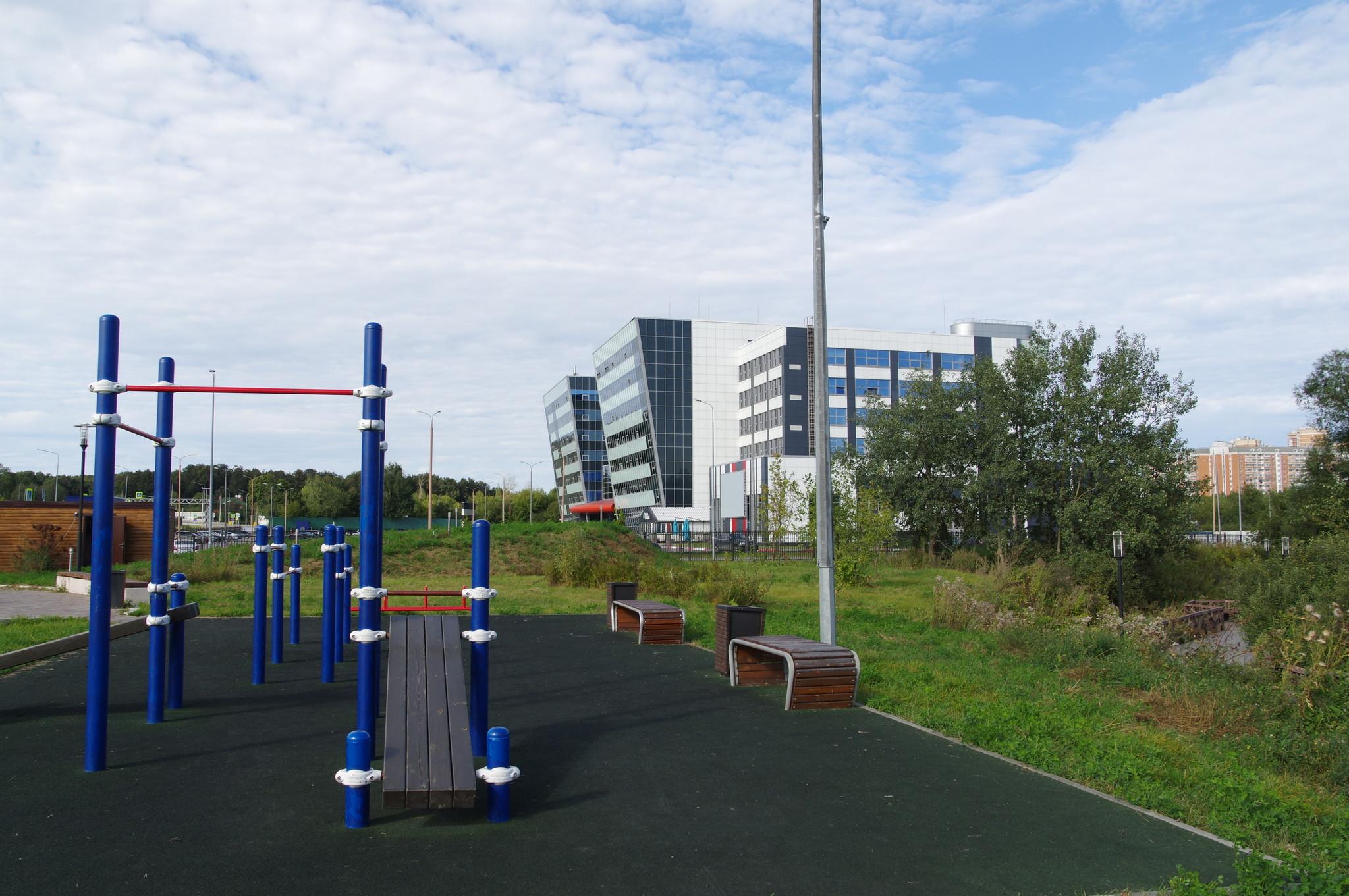 Спортивная площадка в парке «Долгие пруды»