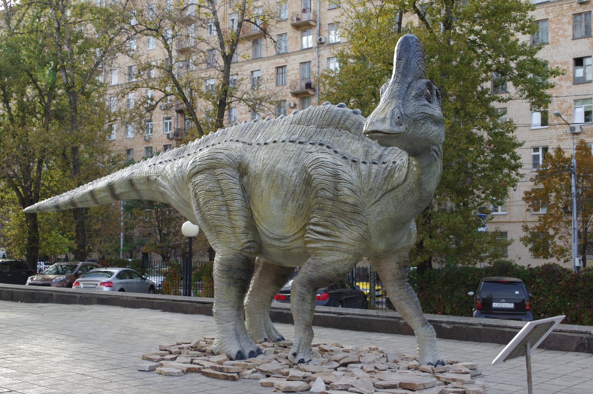 Амурозавр Рябинина. Государственный Дарвиновский музей (улица Вавилова, дом 57)