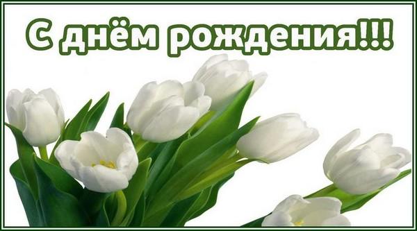 Открытка с днем рождения с белыми тюльпанами, днем