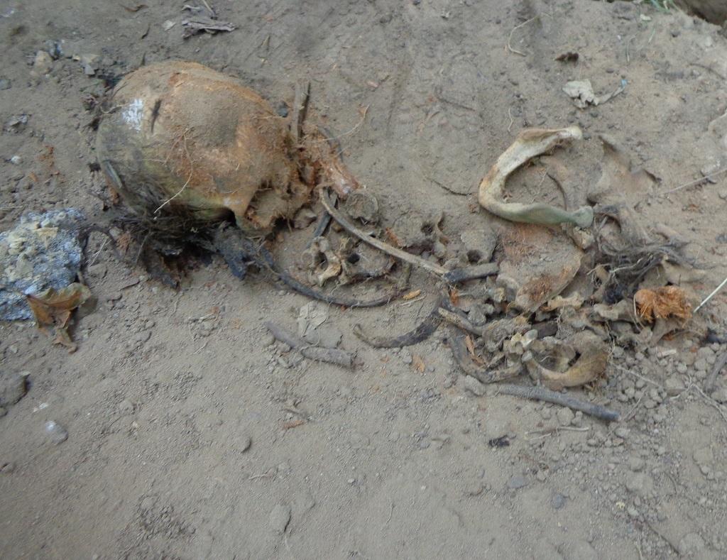 """Чиновники уничтожают старинные могилы в сквере, разбитом на месте Солдатского кладбища """"Арбатец"""". H-583"""
