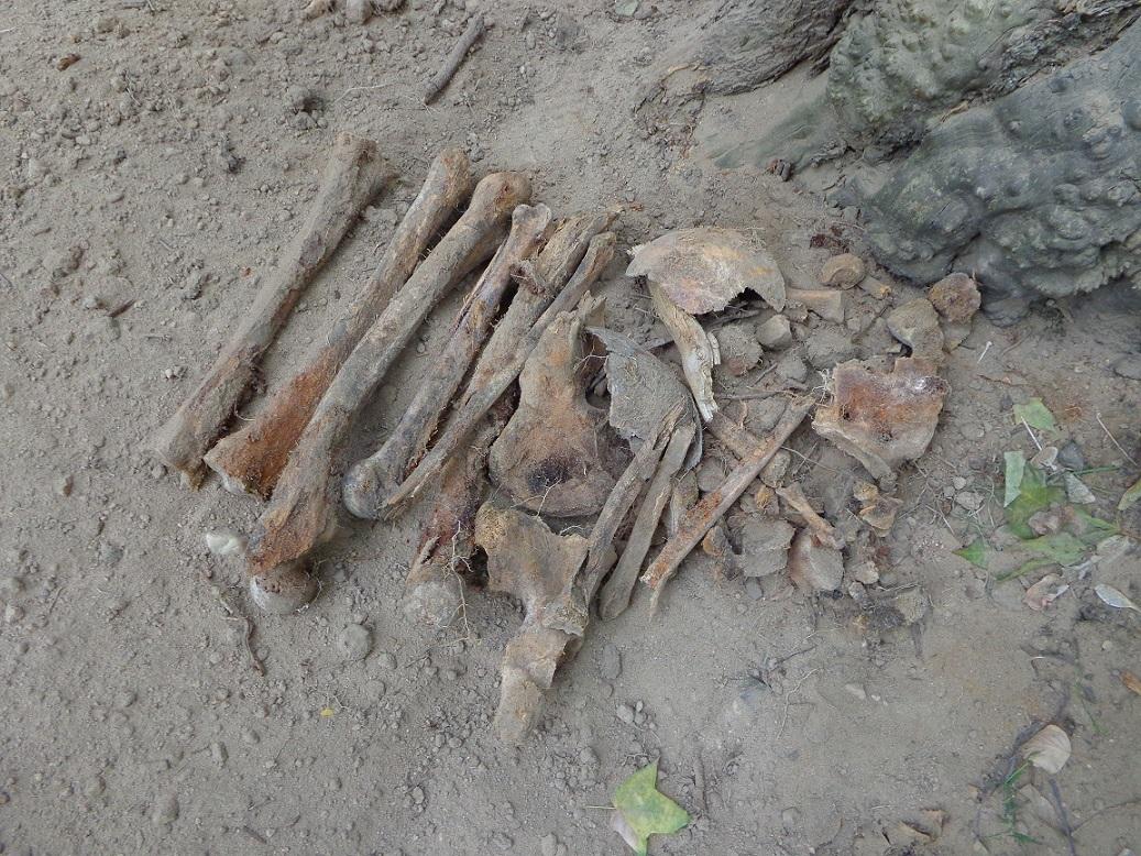 """Чиновники уничтожают старинные могилы в сквере, разбитом на месте Солдатского кладбища """"Арбатец"""". H-584"""
