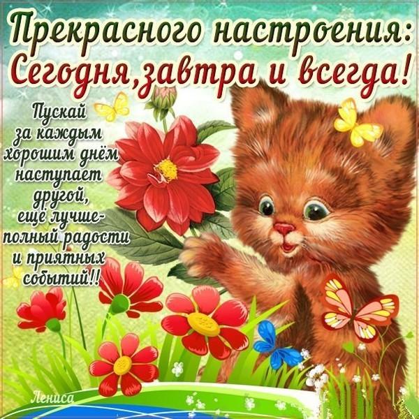 https://content.foto.my.mail.ru/mail/ladeishikova.lyudmila/_blogs/i-7082.jpg
