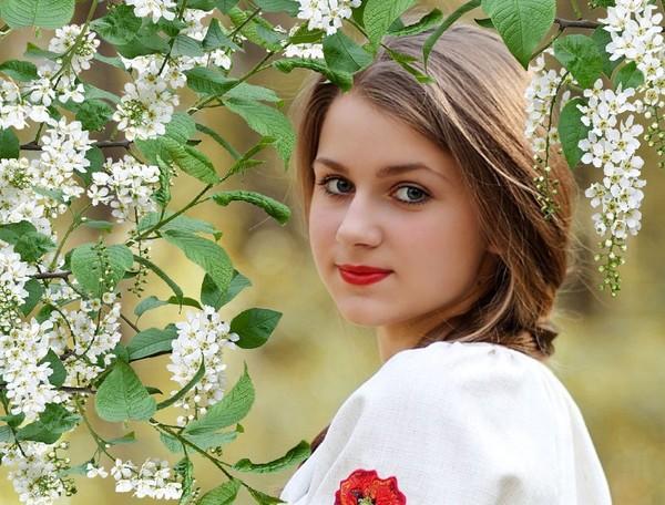 Картинка девушка с черемухой