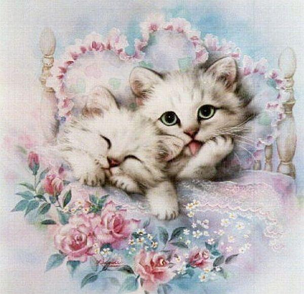 Открытки котенку, февраля именами