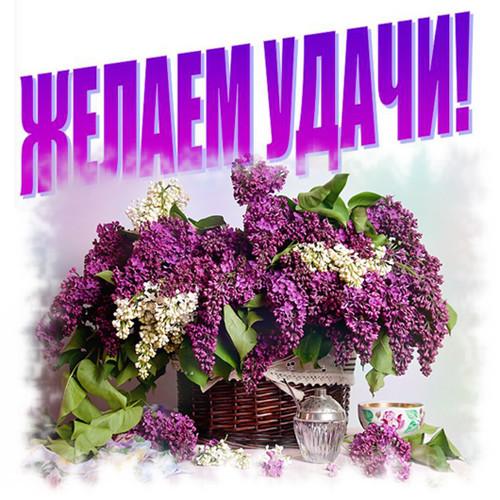 Пожелание удачи в соревнованиях открытка, картинки благодарностью