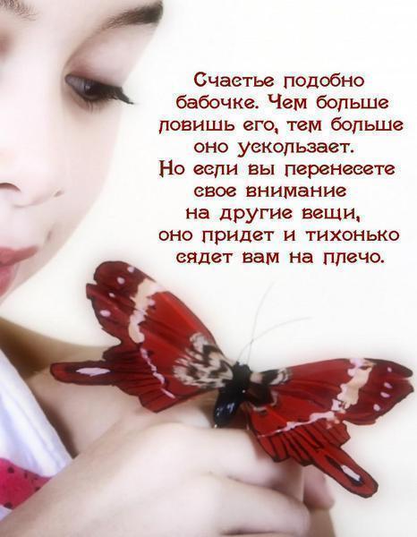 Открытки с бабочками с стихами