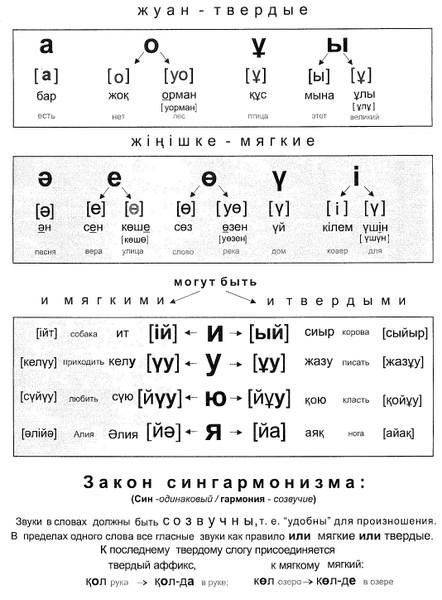 Как видно из таблицы, звук у в казахском языке относится к тем гласным звукам, которые могут быть как твёрдыми...