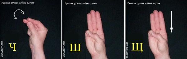 глухих жесты фото
