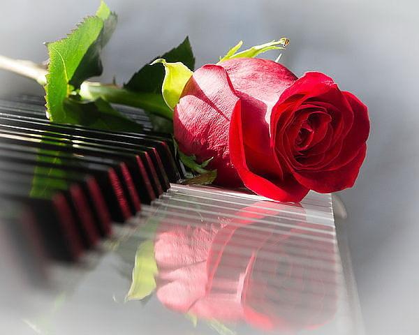 Днем, красивые мелодии для поздравления под стихи женщинам