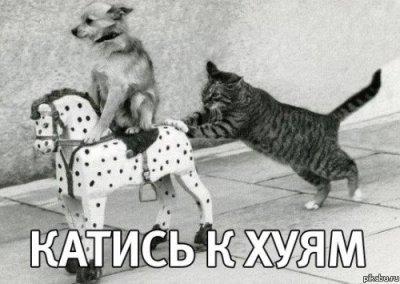 На Московский бирже рубль продолжает падать - Цензор.НЕТ 1233