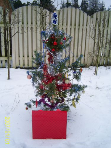http://foto.mail.ru/mail/odona/220/i-230.jpg