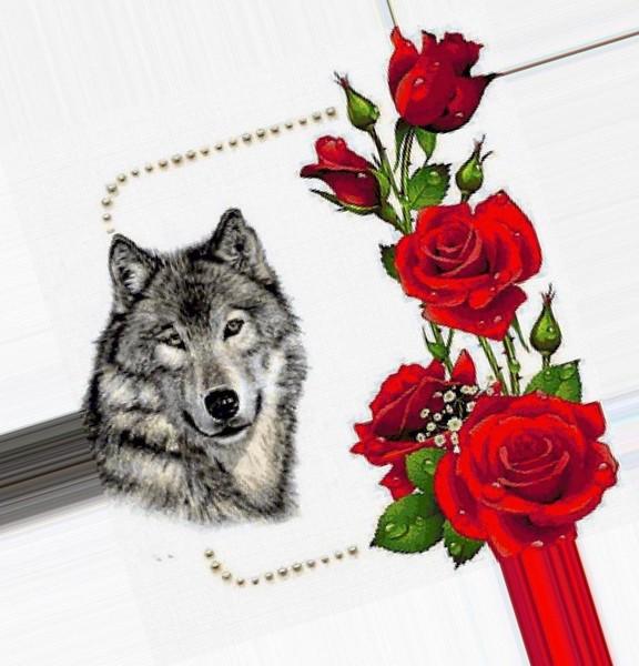 показать открытку волка с розой такой