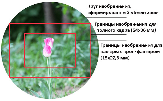 https://content.foto.my.mail.ru/mail/pav6342/_blogs/i-410.jpg