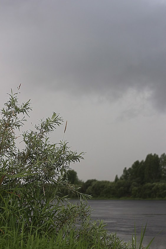 h-7326.jpg