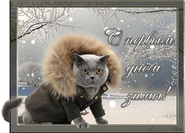 Фото с первым днем зимы прикольные картинки