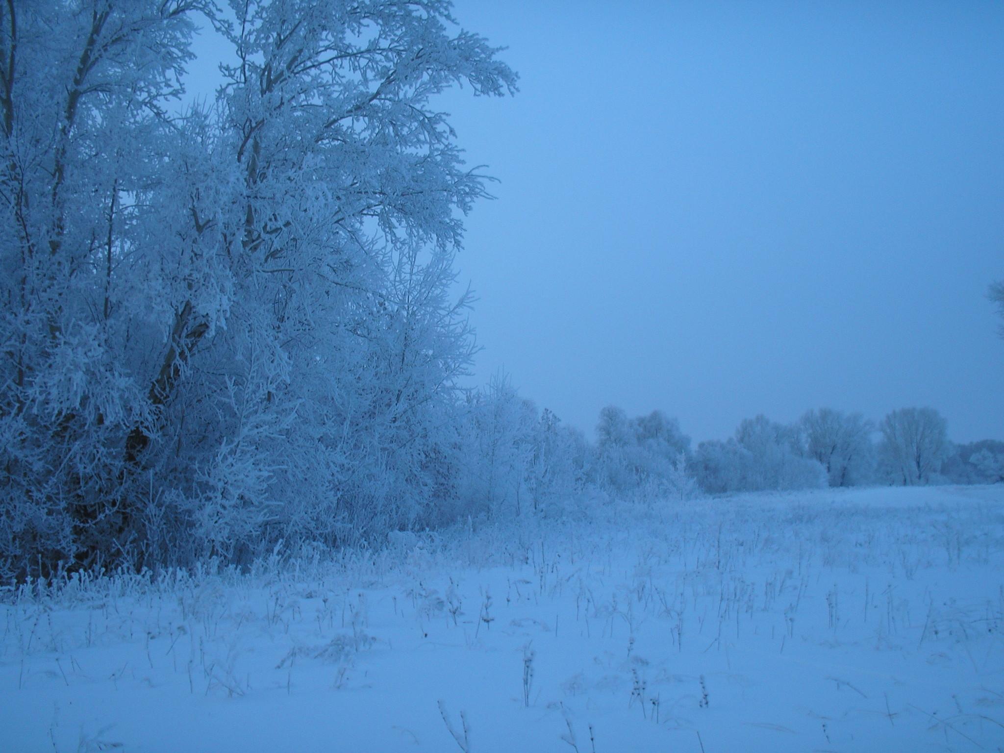 зимнее лето картинки поэтому запустили