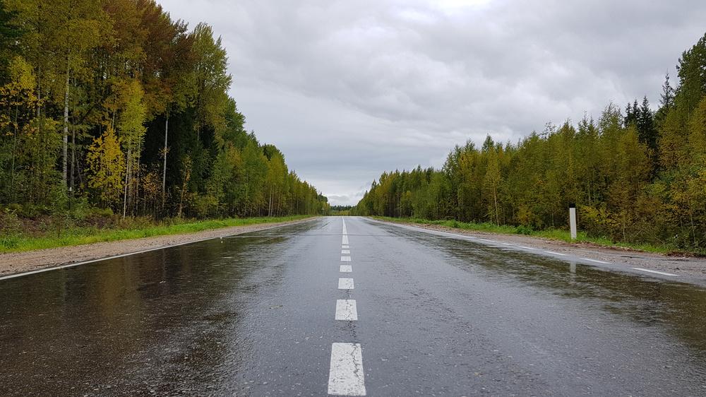 https://content.foto.my.mail.ru/mail/shel1983/01-16_09_17-d14/h-86029.jpg