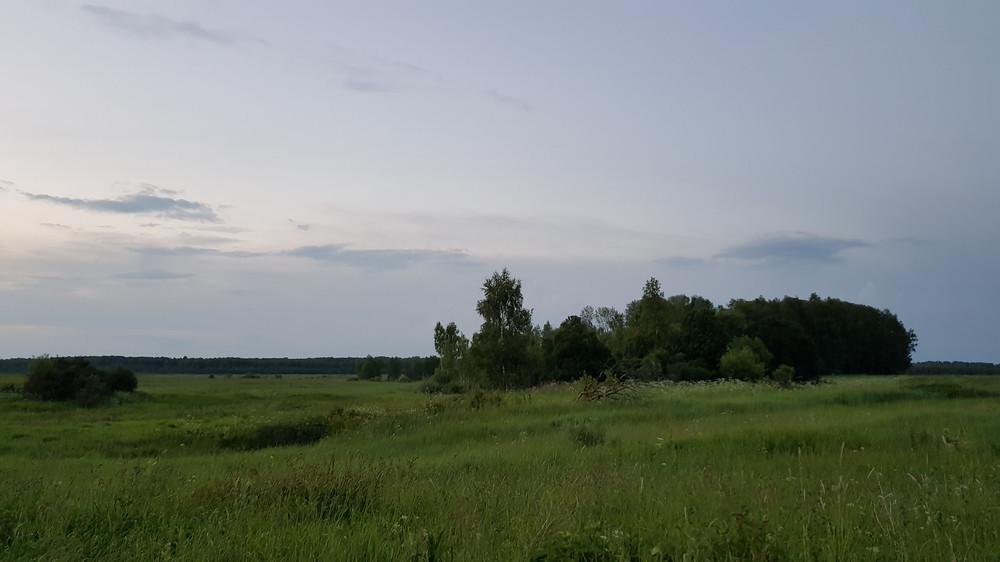 https://content.foto.my.mail.ru/mail/shel1983/30-06_04-07-17_v/h-84085.jpg