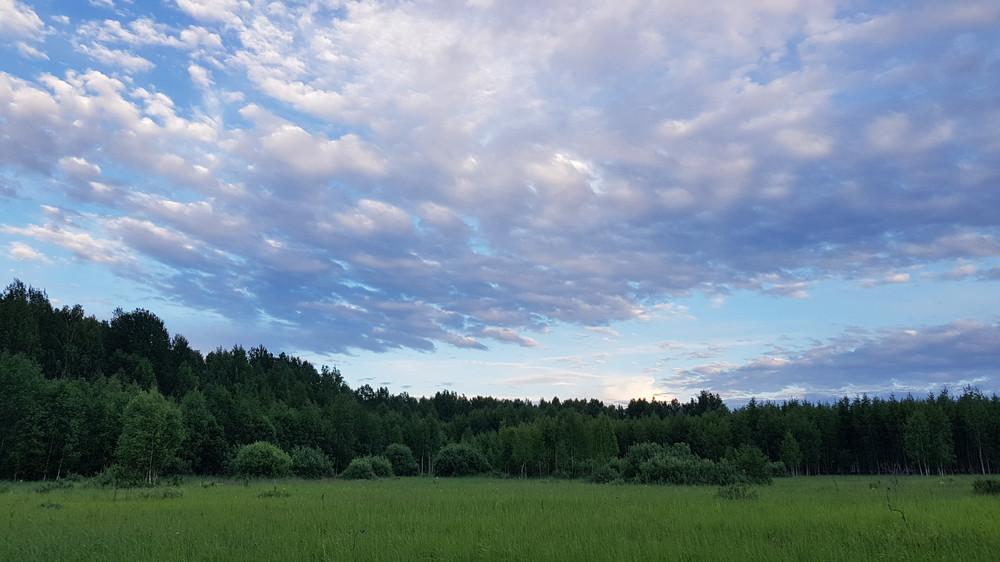 https://content.foto.my.mail.ru/mail/shel1983/30-06_04-07-17_v/h-84178.jpg