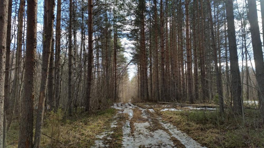 https://content.foto.my.mail.ru/mail/shel1983/keno-d4/h-77365.jpg
