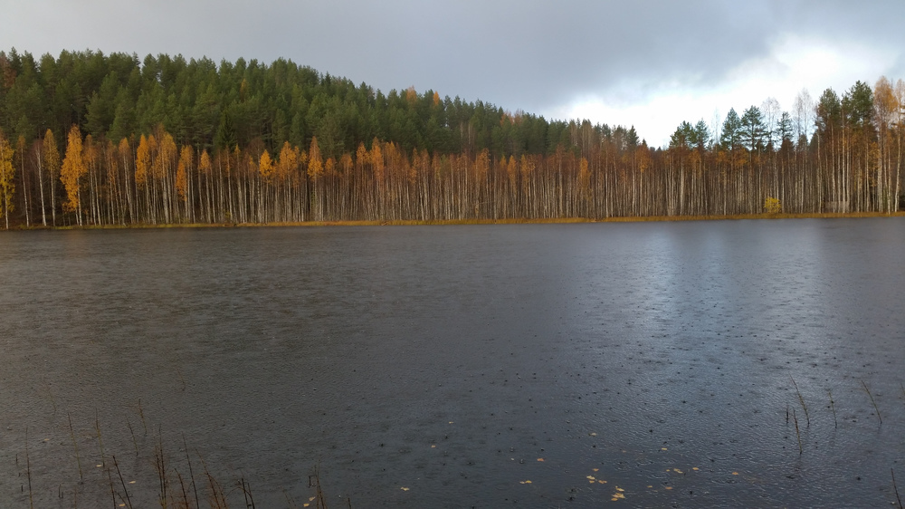 https://content.foto.my.mail.ru/mail/shel1983/leksh-4/h-80881.jpg