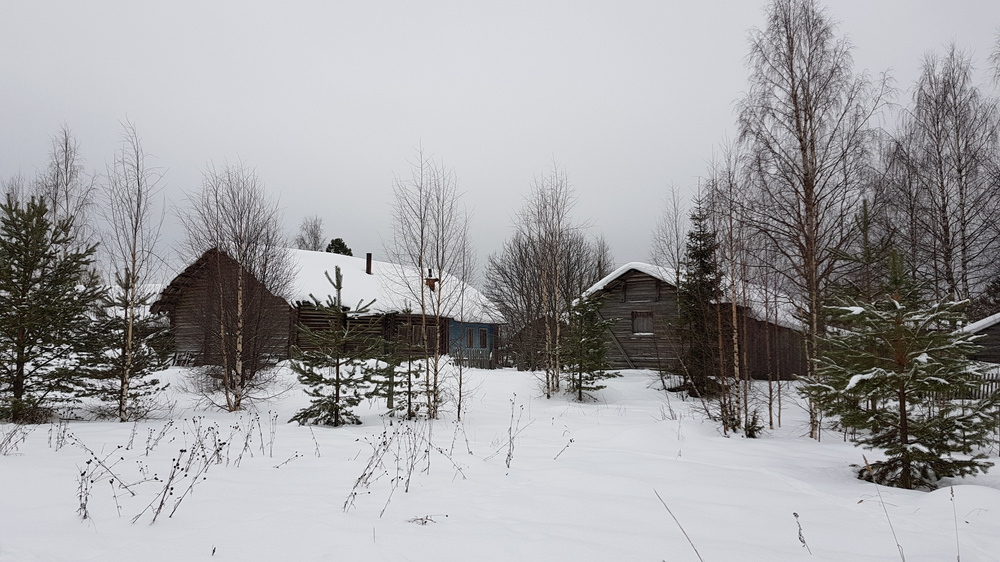 https://content.foto.my.mail.ru/mail/shel1983/ng-2018-d2/h-87421.jpg