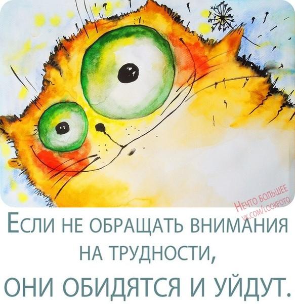 http://foto.mail.ru/mail/tergalowa/_forums/i-94.jpg
