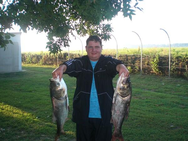 Поймать эту рыбу - не простая задача для рыболова.  Толстолобик в наших водоемах стал рыбой обычной.