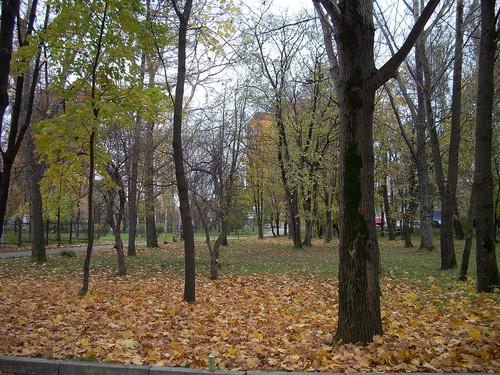 http://foto.mail.ru/mail/tspektor/1/i-169.jpg