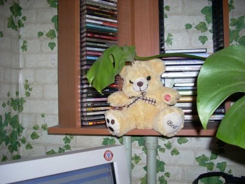 http://foto.mail.ru/mail/tspektor/74/i-89.jpg