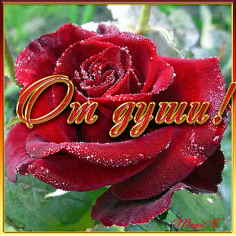 Гифки благодарю от души дорогая подружка