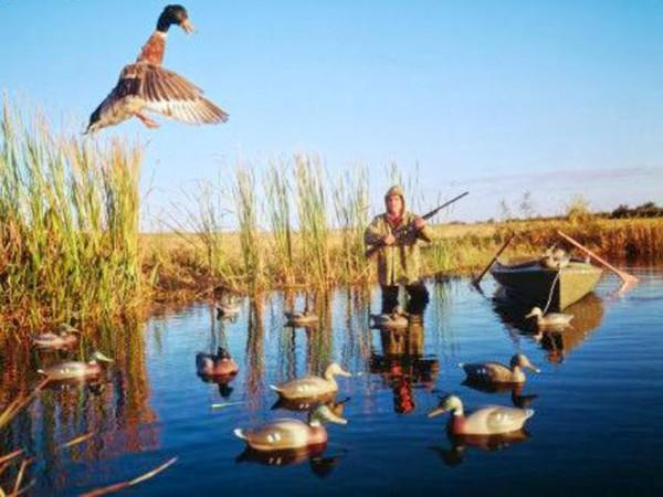 Согласно распоряжению губернатора Полтавщины Александра Удовиченко начало сезона охоты...