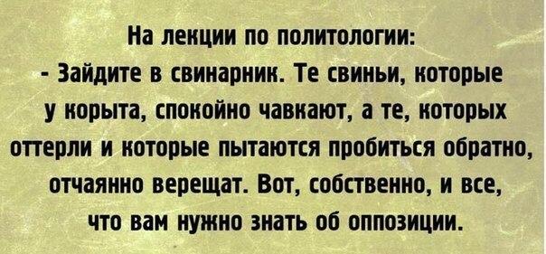 https://content.foto.my.mail.ru/mail/vladimir_kirillo/1260/h-25937.jpg