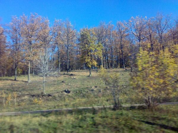 Осенняя мобилография поволжских дорог и дорожек