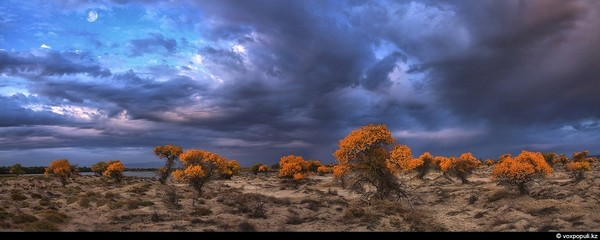 Шедевры природы Казахстана в фотошедеврах Константина Киквидзе
