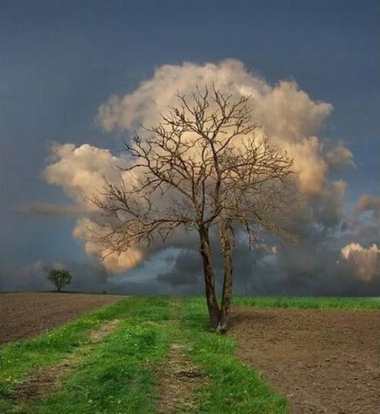 Мир - это совпадение земного и горнего