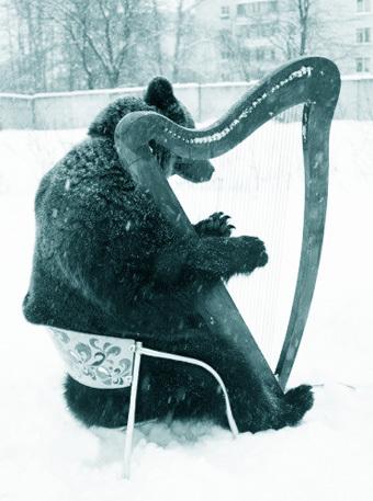 Владимир Кудрявцев. Когда приходит медведь?