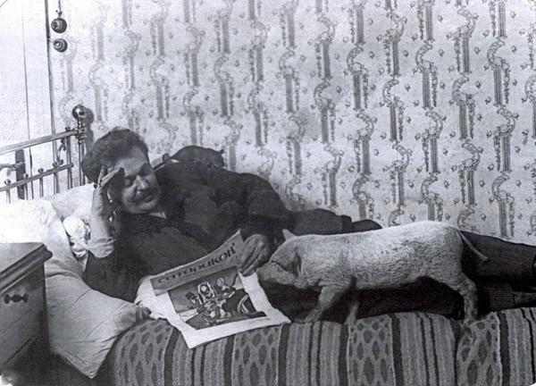 Дрессура, исполненная любви. К 150-летию В.Л.Дурова